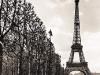 eiffel-tower-black-white